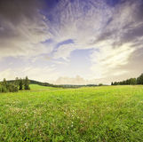 Sunrise and summer meadow Royalty Free Stock Photos