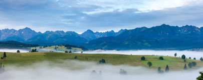 Sunrise and summer misty mountain country panorama Stock Photography