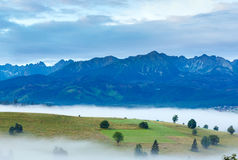 Sunrise and summer misty mountain country view Stock Photography