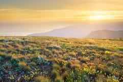 Sunrise in summer mountains Stock Photo