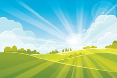 Sunrise summer or spring landscape. Vector illustration Stock Photography