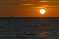 Sunrise with sun and oil platform Stock Image