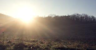 Sunrise. Sun Sunshine With Natural Sunlight Rays.  Royalty Free Stock Image