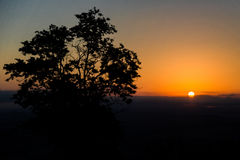 Sunrise with sun and tree backlit Stock Photos