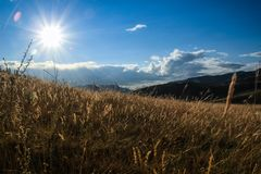 Sunrise and sunrise over a beautiful bright yellow field of grass. In the mountains stock photography