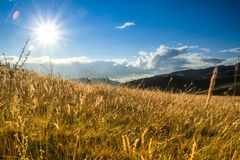 Sunrise and sunrise over a beautiful bright yellow field of grass. In the mountains royalty free stock photography