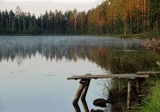 Sunrise. Sunsrise over a forest lake Royalty Free Stock Photos
