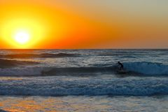 Sunrise Surf. Surfing in Byron Bay Royalty Free Stock Photography