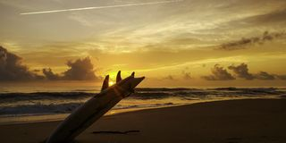 Sunrise with surfboard stock photography