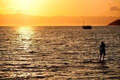 Sunrise Surfer. Stand Up Paddle surfer at sunrise paddling Stock Image