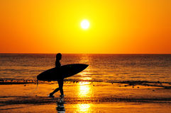 Sunrise Surfer Royalty Free Stock Images