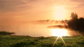Sunrise on the swamp. Misty morning sunrise on the swamp stock footage