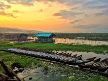 Sunrise at swampy village. Beatiful morning swampy/lake view in Central Java, Indonesia Royalty Free Stock Image