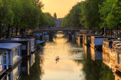 Sunrise swans Amsterdam stock photos