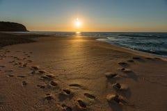 Sunrise from Sydney sea. Stock Photography