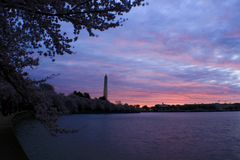 Sunrise in tidal basin in Washington DC. Beautiful sunrise with cherry blossom in a cold morning stock photography