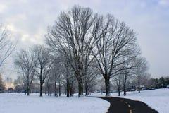 Sunrise time with gorgeous snow in Washington DC Royalty Free Stock Photo