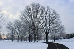 Sunrise time with gorgeous snow in Washington DC. L love walk around also I love snow day royalty free stock photo