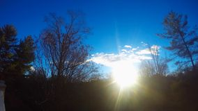 Sunrise time lapse. Blue sky time lapse of early morning sunrise over the trees stock video footage