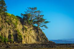 Sunrise Time at Scandrett Beach Auckland New Zealand. Cliff Rocky Headlands. Calm and Peaceful During Low Tide Stock Images