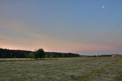 Sunrise time in summer morning , meadow with cut grass,forest  a Royalty Free Stock Photography