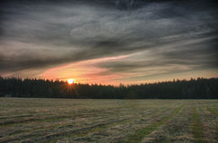 Sunrise time in summer morning , meadow with cut grass,forest  a Royalty Free Stock Photo