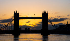 Sunrise at Tower Bridge Stock Photography