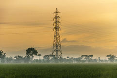 Sunrise and tower yellow sky. Sunrise and tower at paddy field village Stock Photo