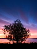 Sunrise Tree. A lone tree stands against a beautiful sunrise stock image