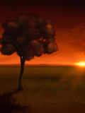 Sunrise Tree - Digital Painting. Illustration of a lone tree overlooking a distant orange sunrise Royalty Free Stock Photo