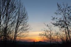 Sunrise between tree Royalty Free Stock Photography