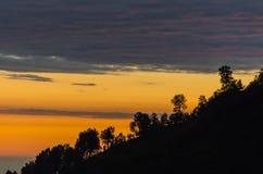Sunrise with trees on mountain. Warm sunrise with trees on mountain royalty free stock photography