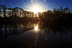 Sunrise and Trees reflected in still water, with lens flare Stock Photo