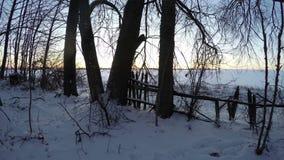 Sunrise through trees in winter, time-lapse 4K. Sunrise through old deciduous trees by old wooden fence in winter, time lapse 4K stock video footage