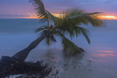 Sunrise on the tropical beach. Stock Image