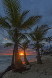 Sunrise on the tropical beach. Stock Photos