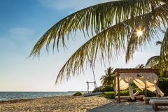Relaxing Cabana on Beach in Mexico. Sunrise on tropical beach with luxury cabana and palm trees Stock Images