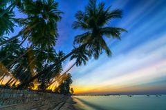 Sunrise on the tropical beach with sun rays piercing through the coconut palm trees. In the sky creates beautiful scenery to welcome new days at paradise beach stock photo