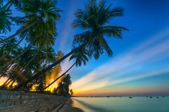 Sunrise on the tropical beach with sun rays piercing through the coconut palm trees. In the sky creates beautiful scenery to welcome new days at paradise beach Royalty Free Stock Image