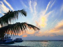 Sunrise on a tropical island in the Indian Ocean. Maldives. Royalty Free Stock Image