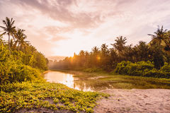 Sunrise in tropical island, palms and water in Nusa Penida, Bali. Sunrise in tropical island, palms and water in Nusa Penida Royalty Free Stock Images