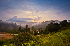 Sunrise in a tropical jungle. View of the sun rising over a mountain range and a tropical jungle in Malaysia Stock Photography