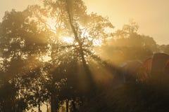 Sunrise tropical mountain  i Royalty Free Stock Photo
