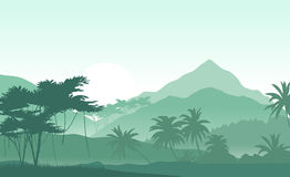 Sunrise in the tropical mountains. Vector illustration . Beautiful morning in the green mountains Stock Photo