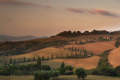 Sunrise in Tuscany with famous cypress alley Stock Images