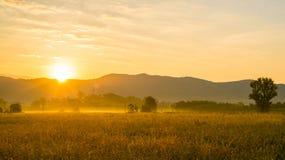 Sunrise in tuscany Royalty Free Stock Photos