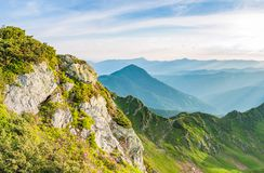 Sunrise in Ukrainian Carpathians. Stones with rhododendrons on foreground with foggy background royalty free stock photos