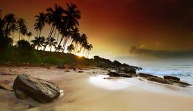 Sunrise under the palms. Extremely beautiful vivid sunrise under the coconut plams on Sri Lanka beach. Panoramic photo Royalty Free Stock Photography