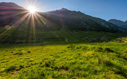Sunrise in valley of transfagarasan mountains. Beautiful carpathian nature royalty free stock photo