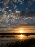 Sunrise in Viera wetlands Stock Photography